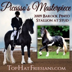 Friesian Sporthorse Association Ad