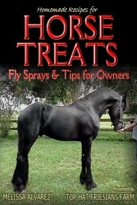 2013horsetreats200x300